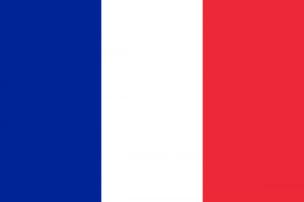 Flag_of_France.svg.png